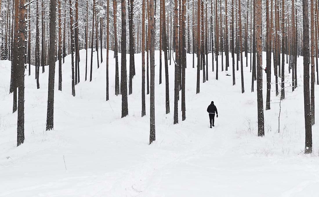 Kimara hirsirakennusten materiaalina käytetään hitaasti kasvanutta arktista mäntyä. Hirsi ei vääntyile eikä halkeile kuivuessaan vaan pysyy aina taatusti tiiviinä. Kierrätettävä hirsi on ekologinen rakennusmateriaali.